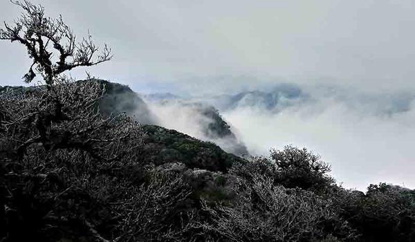 Hình ảnh băng tuyết phủ trắng đỉnh núi không phải khách du lịch nào cũng may mắn chứng kiến