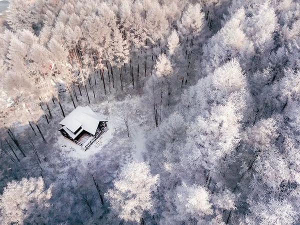 Nhiếp ảnh gia Nagaoshi 22 tuổi sống tại Ishikawa, Nhật Bản với tài khoản Instagram cùng tên đăng tải nhiều hình ảnh về vẻ đẹp của đất nước Phù Tang qua các mùa.