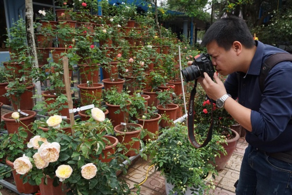 Nhiều người tìm chụp cho mình những bức ảnh về hoa hồng đẹp nhất.