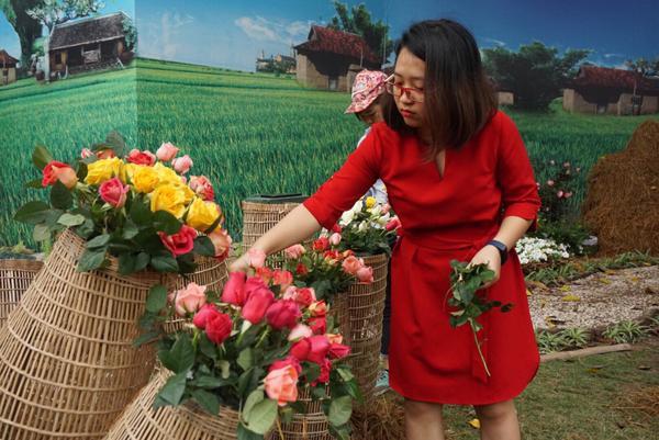 Theo BTC, hạn chế tối đa về những tồn tại từ mùa lễ hội năm ngoái, Đại sứ quán Bulgaria đã phối hợp với Viện di truyền giống Bộ Nông nghiệp và Phát triển nông thôn nhập về 1680 cây hồng Bulgaria gồm hơn 100 loại hồng khác nhau.